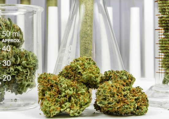 What pharmacists need to know about dispensing medicinal cannabis